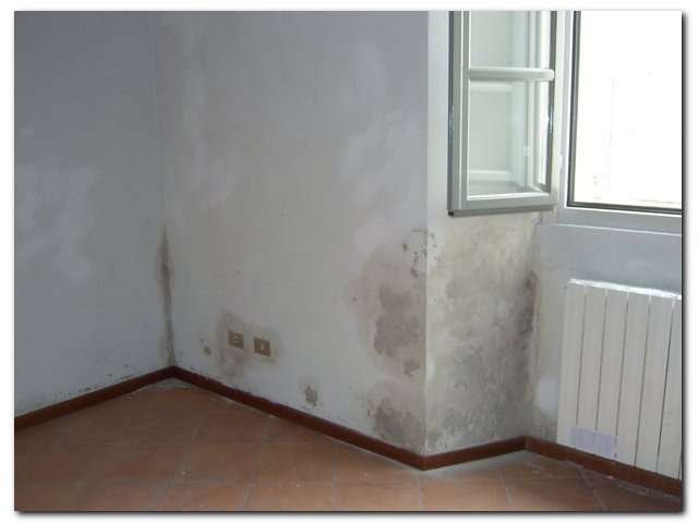 Umidità muri