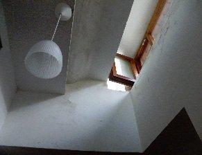 muffa pareti