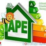 Obbligo APE