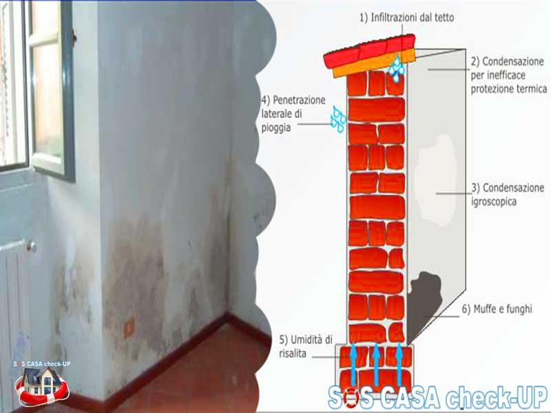 Macchie di umidit sul soffitto come individuare le cause sos casa check up - Umidita e muffa in casa ...